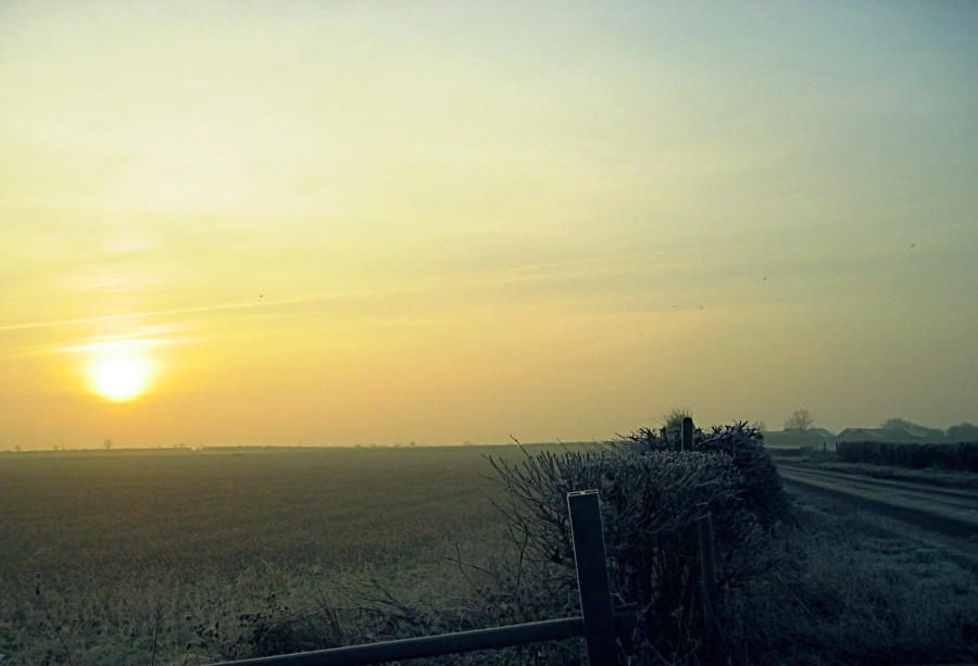 Suffolk--January 2006